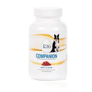 Picture of Dog Companion Chewable - Beef